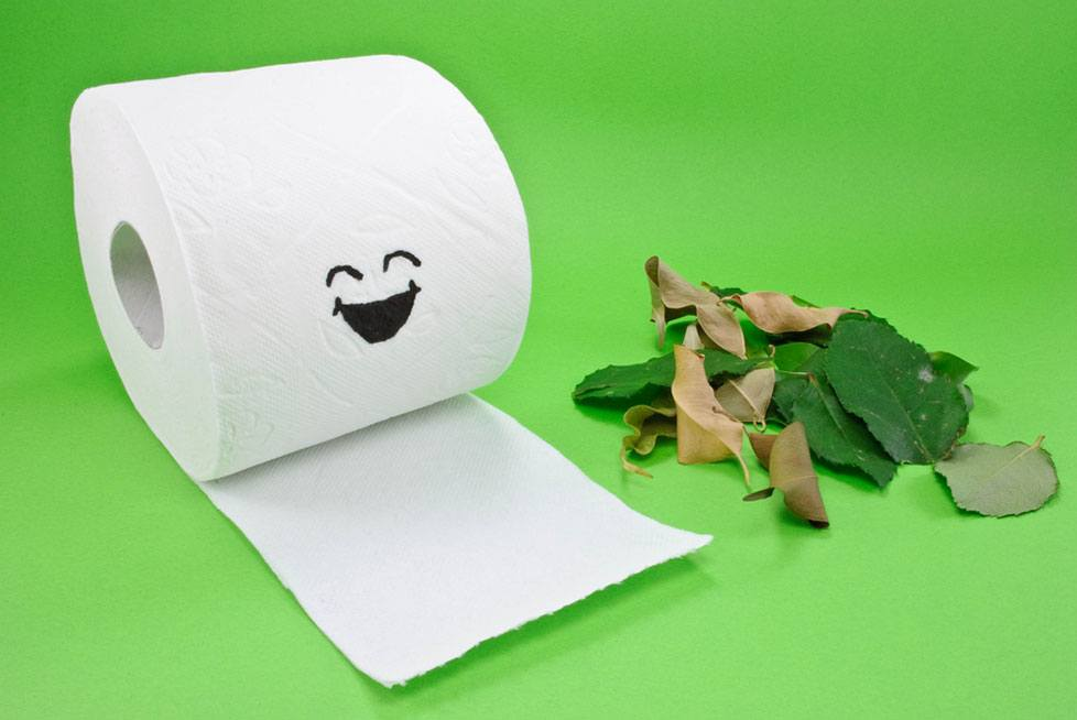 Toilet Paper For RV Septic System